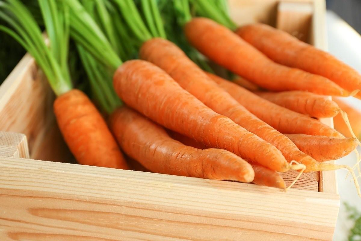 Рыжая красавица: как выбрать морковь