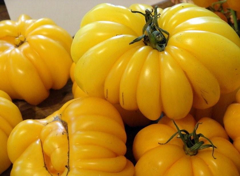 8 жёлтых урожайных сортов помидоров