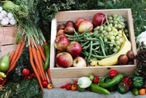 Экологически чистые продукты с фермы «Корневых»