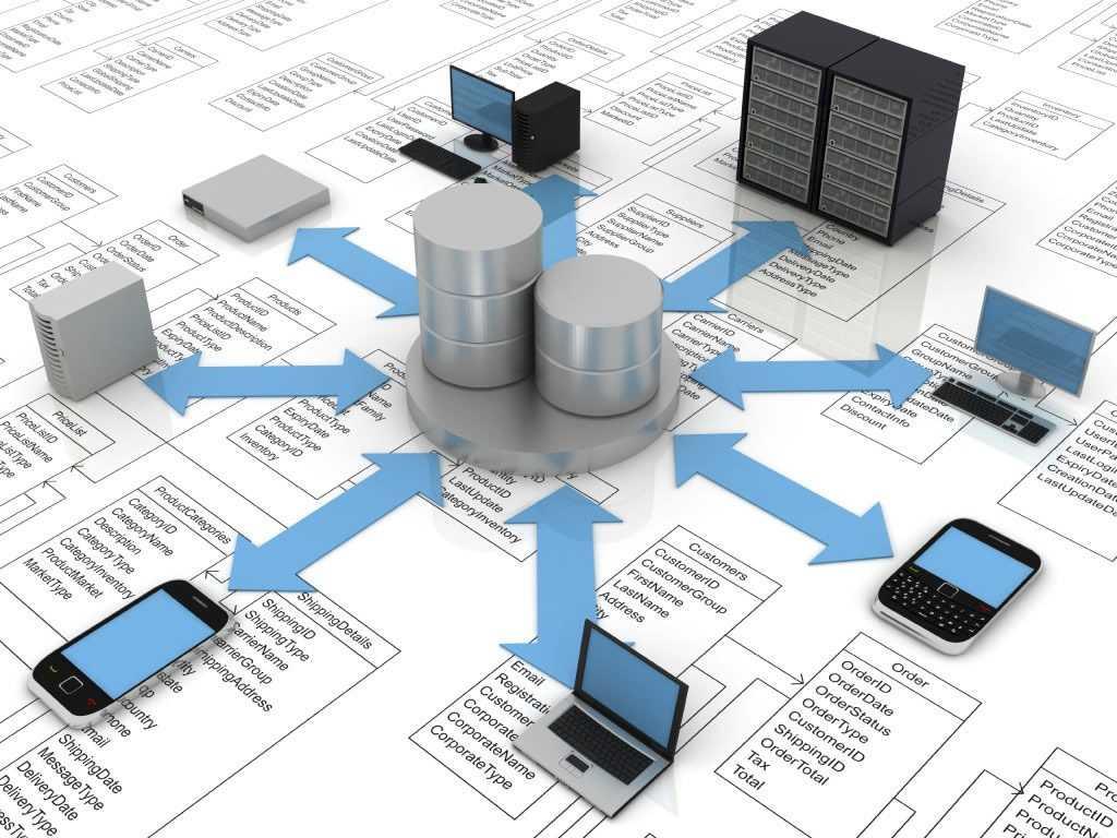 Актуальные базы данных предприятий